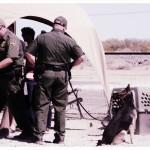 Border Patrol Sniffer Dogs