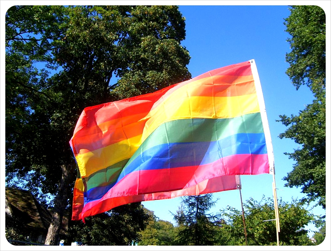 Rainbow flag ... brandishing after reportedly threatening a pregnant woman and her child.