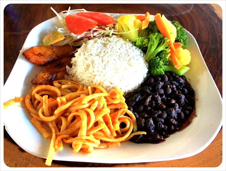 Casado vegetariano Costa Rica