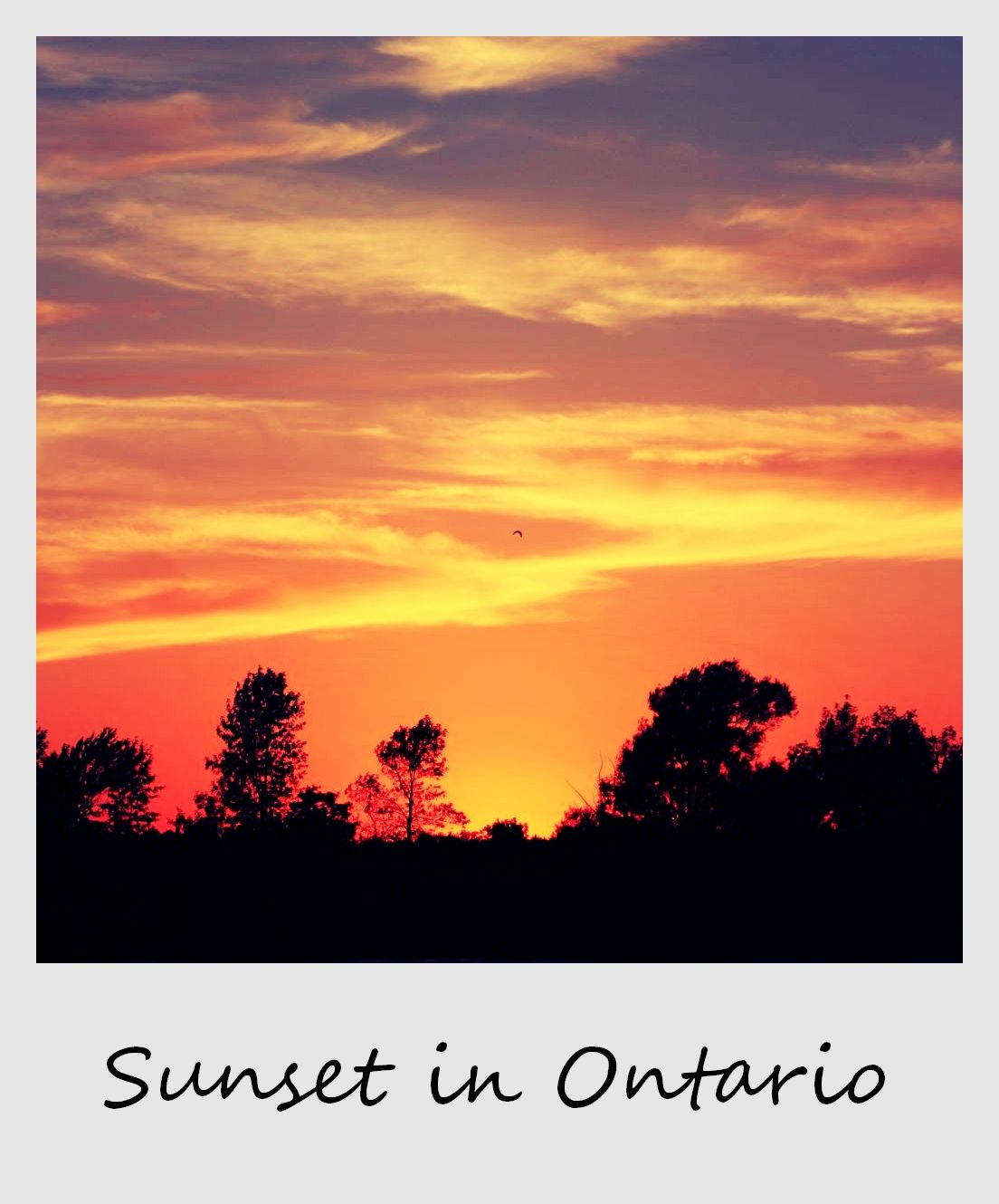 polaroid of the week canada ontario sunset