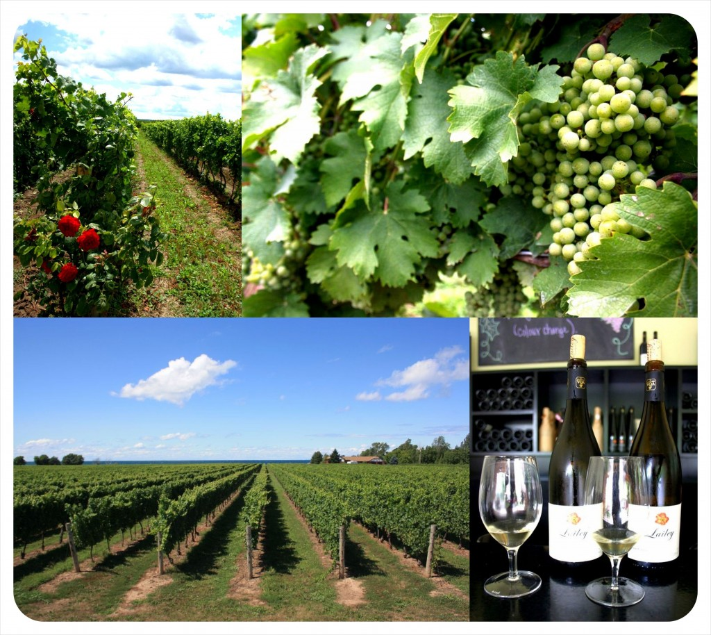 niagara wine country ontario