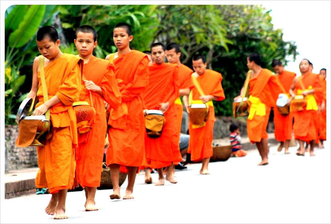 november young monks luang prabang laos