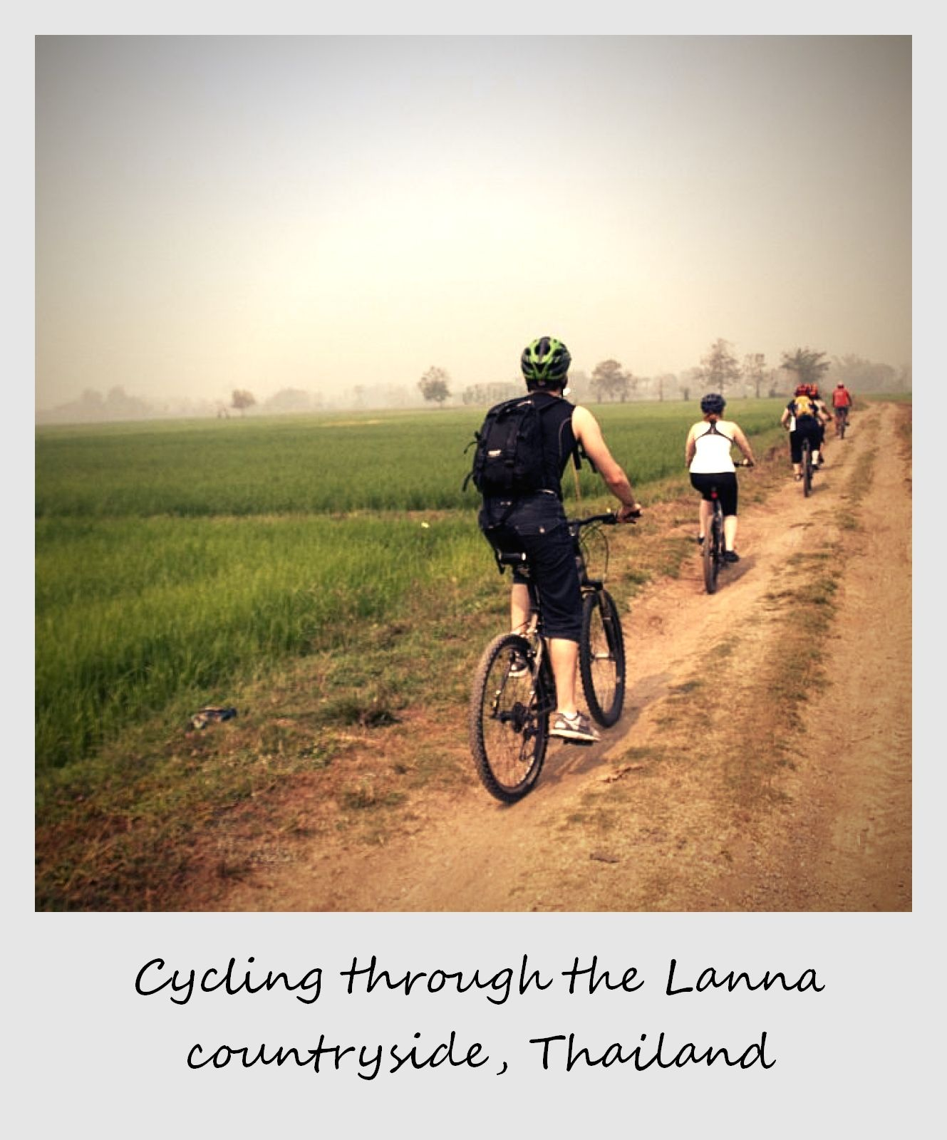 polaroid of the week thailand chiang mai province cycling through rice fields