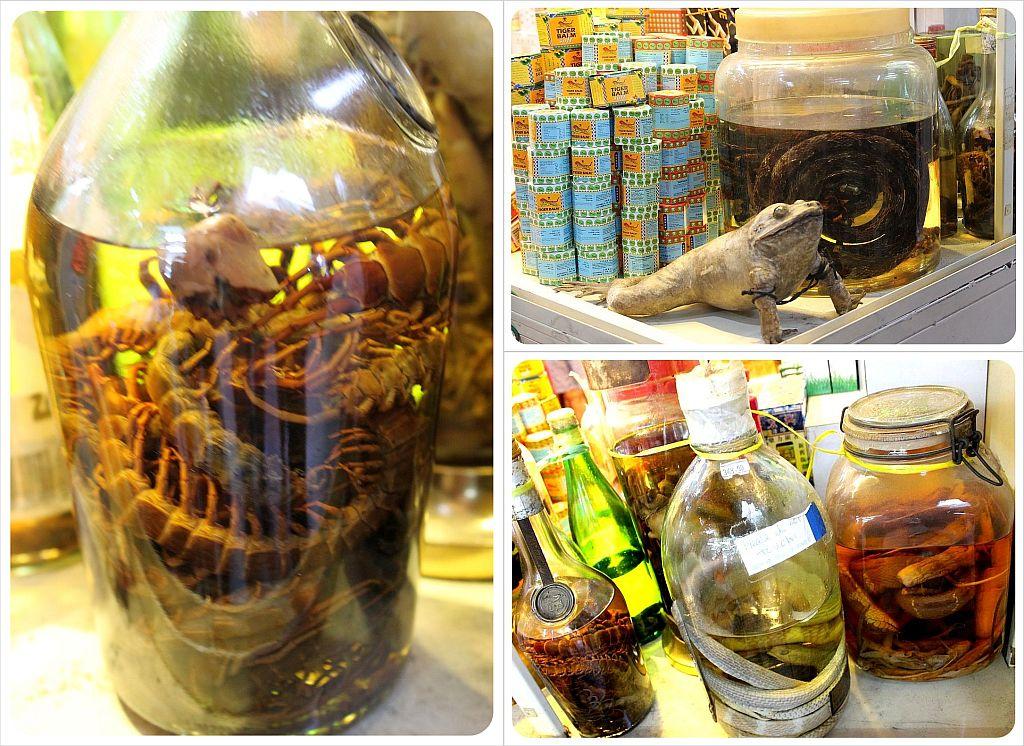 singapore chinatown chinese medicine shop
