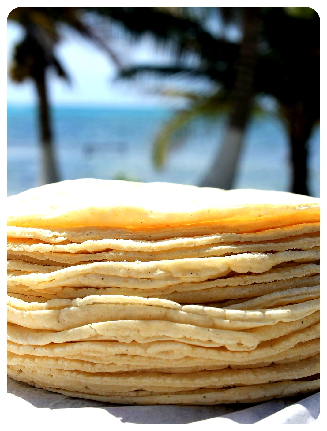 fresh tortillas mexico