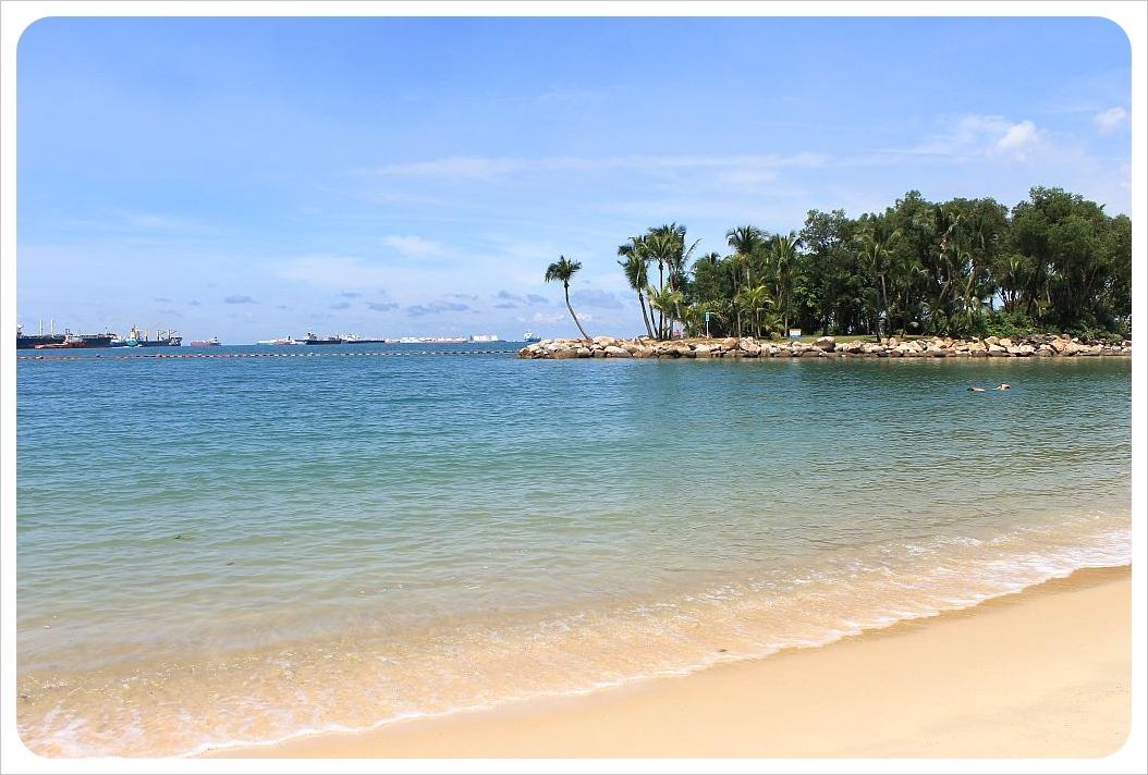 sentosa island palm trees and ocean