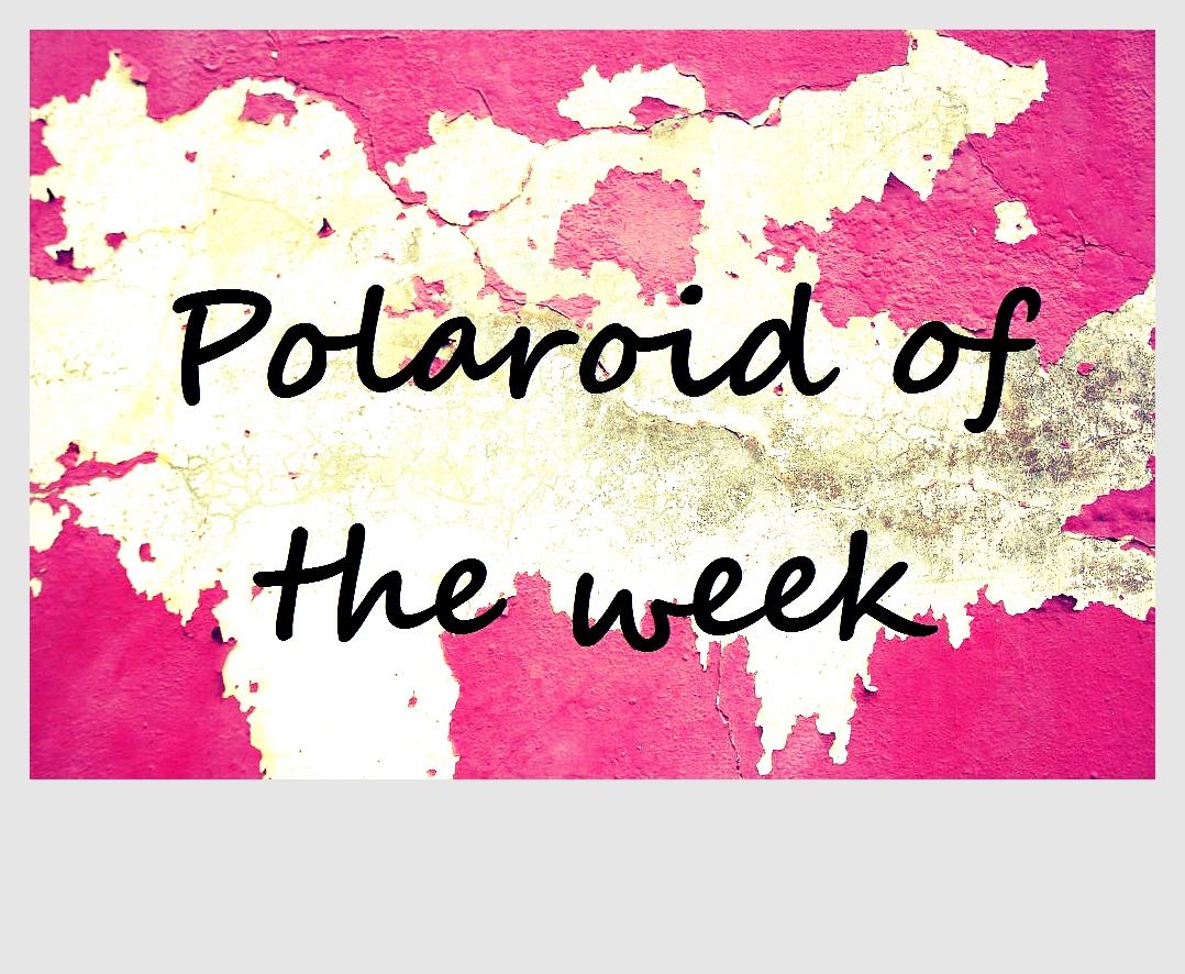 polaroidoftheweekphoto11