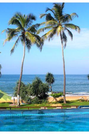 reefs edge hotel infinty pool