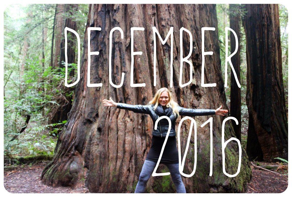 december-2016-life-lately