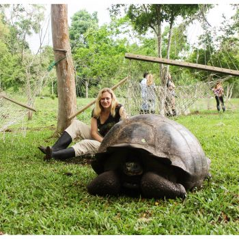 galapagos tortoise dani1