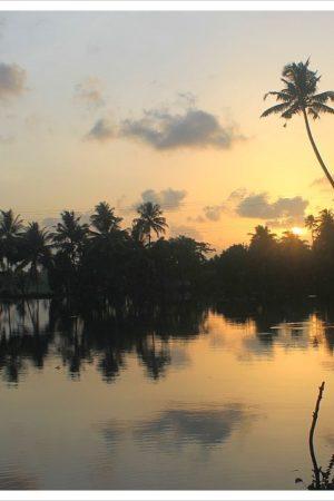 kerala backwaters sunset9