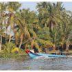 mekong delta boat8